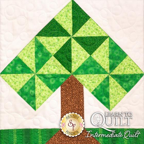 Learn to Quilt Intermediate Block Five